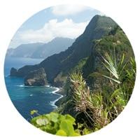 Reistrend Madeira