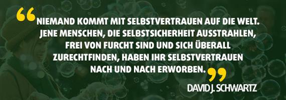 Zitat David J. Schwartz